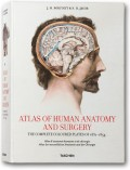 Atlas of Anatomy (XL-Format)