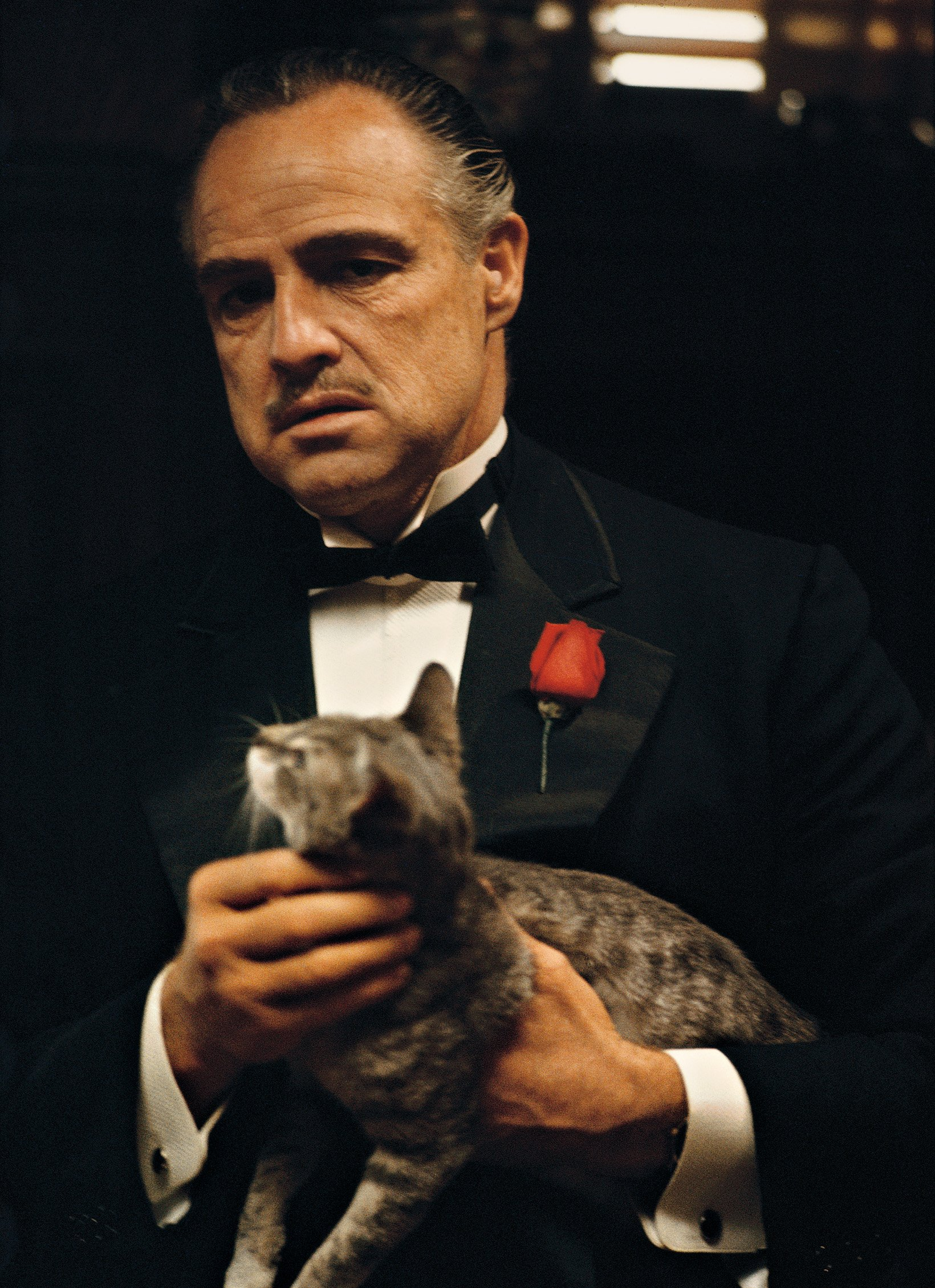 The Godfather Family A...