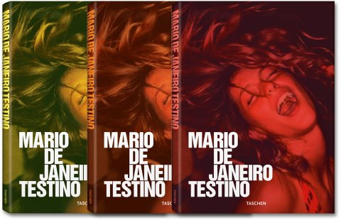 http://www.taschen.com/media/images/480/default_fo_testino_rio_covers_0907311022_id_280293.jpg
