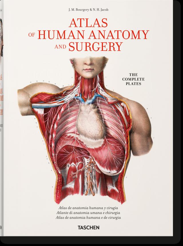 Bourgery. Atlas de anatomía humana y cirugía - Libros TASCHEN