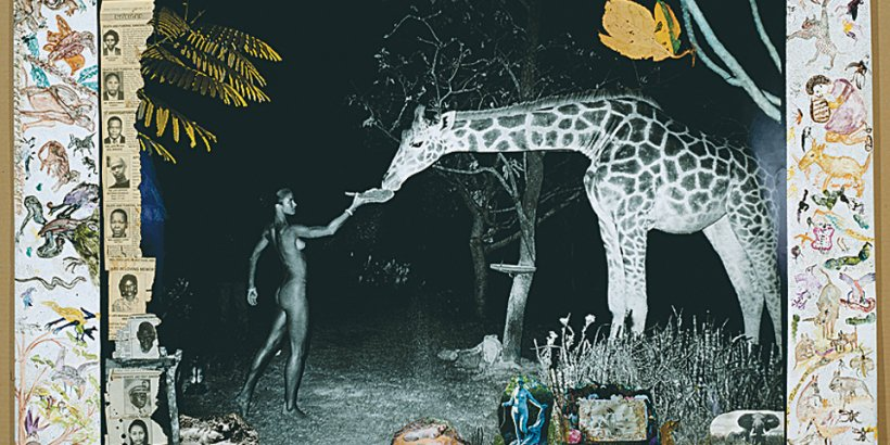 Peter Beard, Collector's Edition 'Fayel Tall'