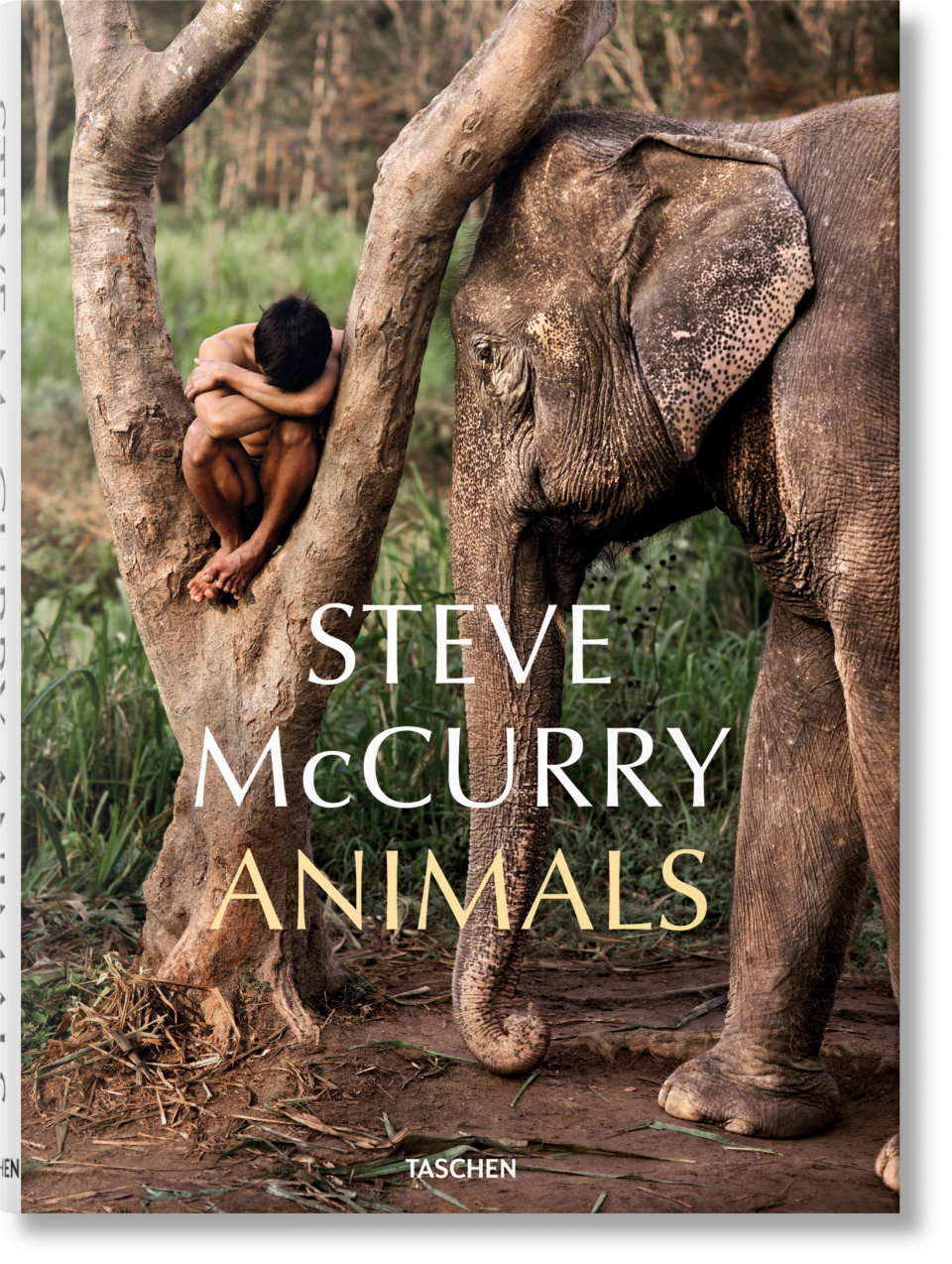 Animal Instincts 3 Full Movie steve mccurry. animals